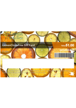 Gift Card for 3-4 Year Old Tree (Any Variety)